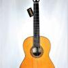 Francisco Esteve 9 C/B Carbon Fiber Bars Guitar